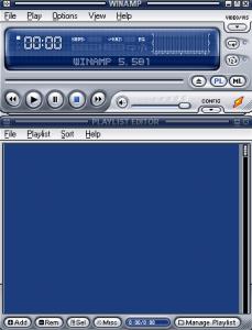 احد الثيمات المتوفرة مع برنامج وين امب بشكل افتراضي